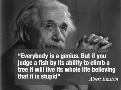 albert-einstein-quotes-2-content