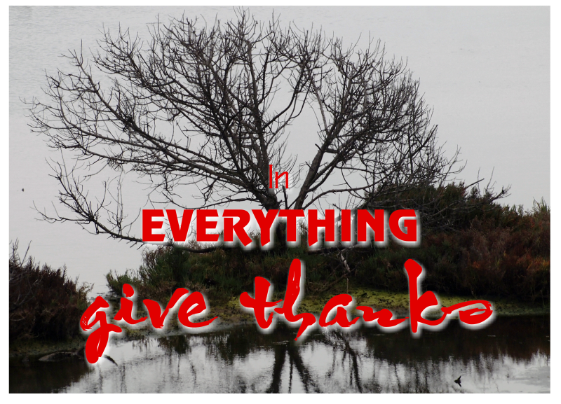 in_everything_give_thanks-001-large
